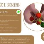 Erdbeeren_einzeln_RZ4
