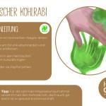 Kohlrabi_2_einzeln_RZ