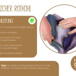 Rotkohl_einzeln_RZ11