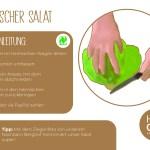 Salat_einzeln_RZ3
